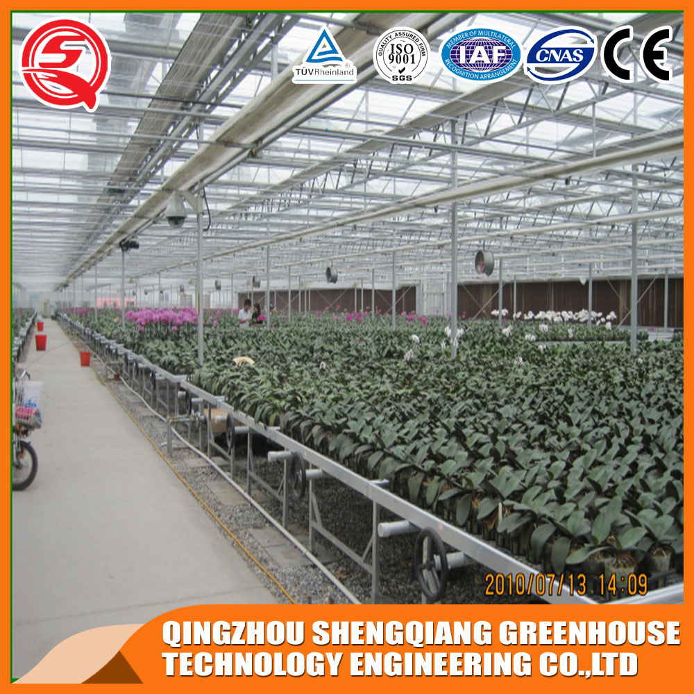 Agriculture Plastic Greenhouse for Vegetable/Flower