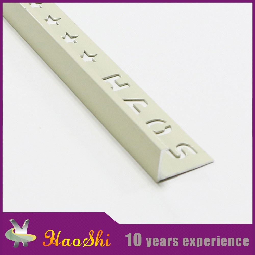 Good Feedback Make in China Aluminum L Shape Corner Decorative Trim (HSL-283)