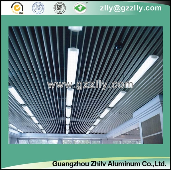 Aluminum False Vertical Style Screen Ceiling for Indoor Decoration -Sc002