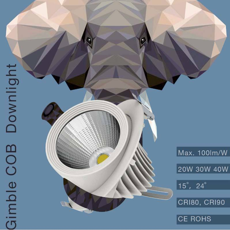 100lm/W CRI80 CRI90 20W 30W 40W Gimble COB LED Downlight with 130mm Cut out