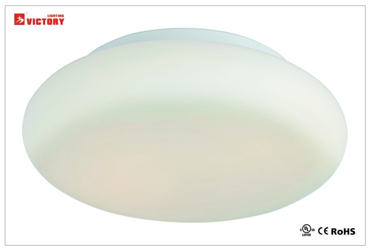 Waterproof Modern Simple Round Home LED Ceiling Light Lamp with Opal Glass