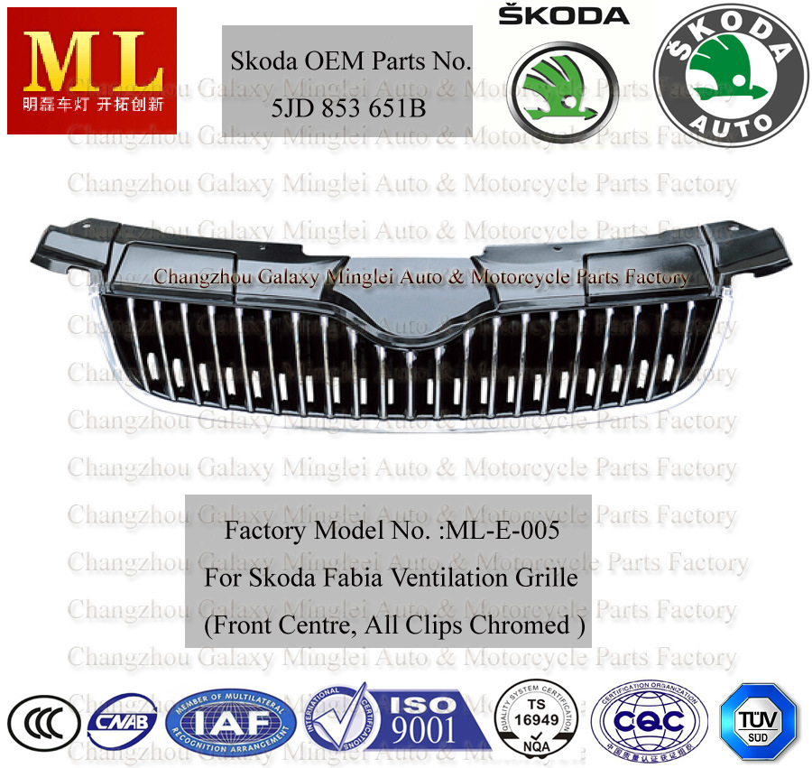 Car Grille for Skoda Fabia From 2007 (5JD853668B)