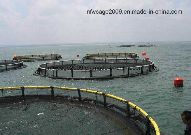 High Quality Best Price Aquaculture Traps Product Type Circle Floating Fish Cage