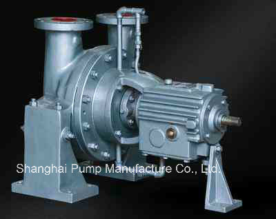 Y Type Efficient Oil Pump