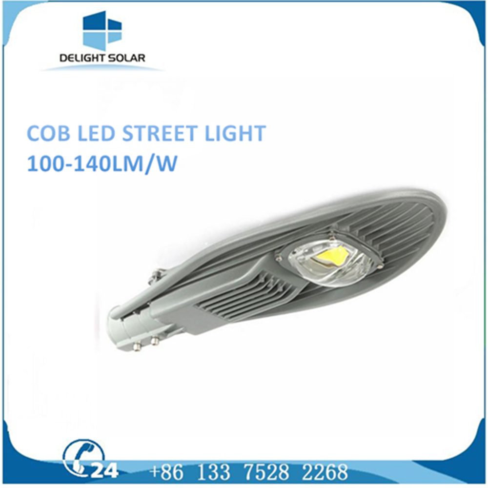 30W/50W COB Chip Light Outdoor Pathway/Roadway Solar LED Street Lamp