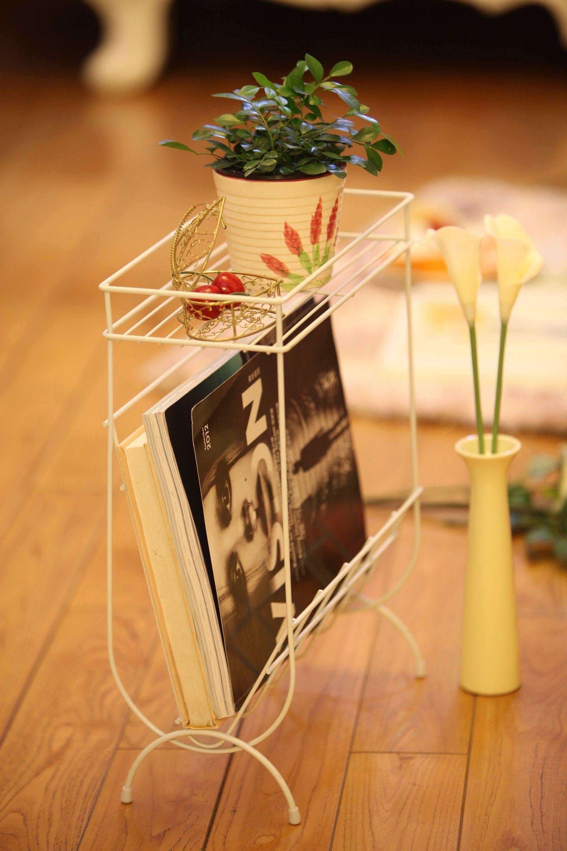 Concise, Fashion, Magazine Rack, Book Rack, Display Rack