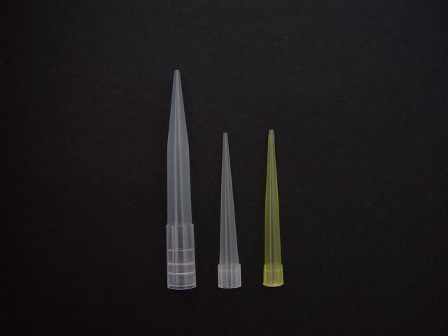 Disposable Laboratory Plastic Eppendorf Pipette Tip (A01-A26)