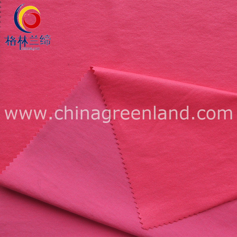 Nylon Rayon 13s/10s Fluoresced Twill Warp Spandex Fabric for Shirt Dress (GLLLDYG001)