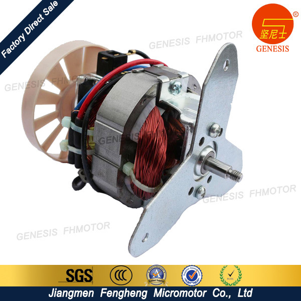 AC Gear Electric Motor for Mixer Grinder
