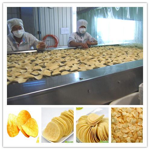 Ful Automatic Potato Making Machine Special for Russia Market
