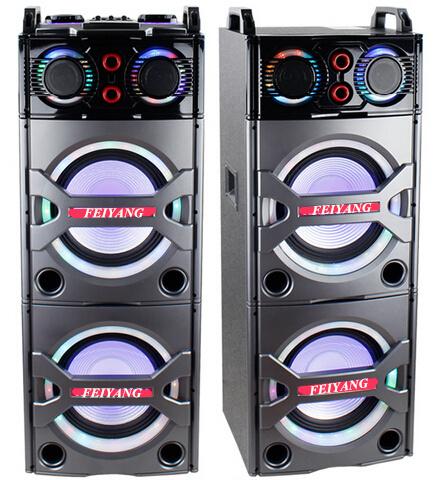 Double 10inch Bluetooth PA Loudspeaker Karaoke Entertainment System, Wireless Mic E246