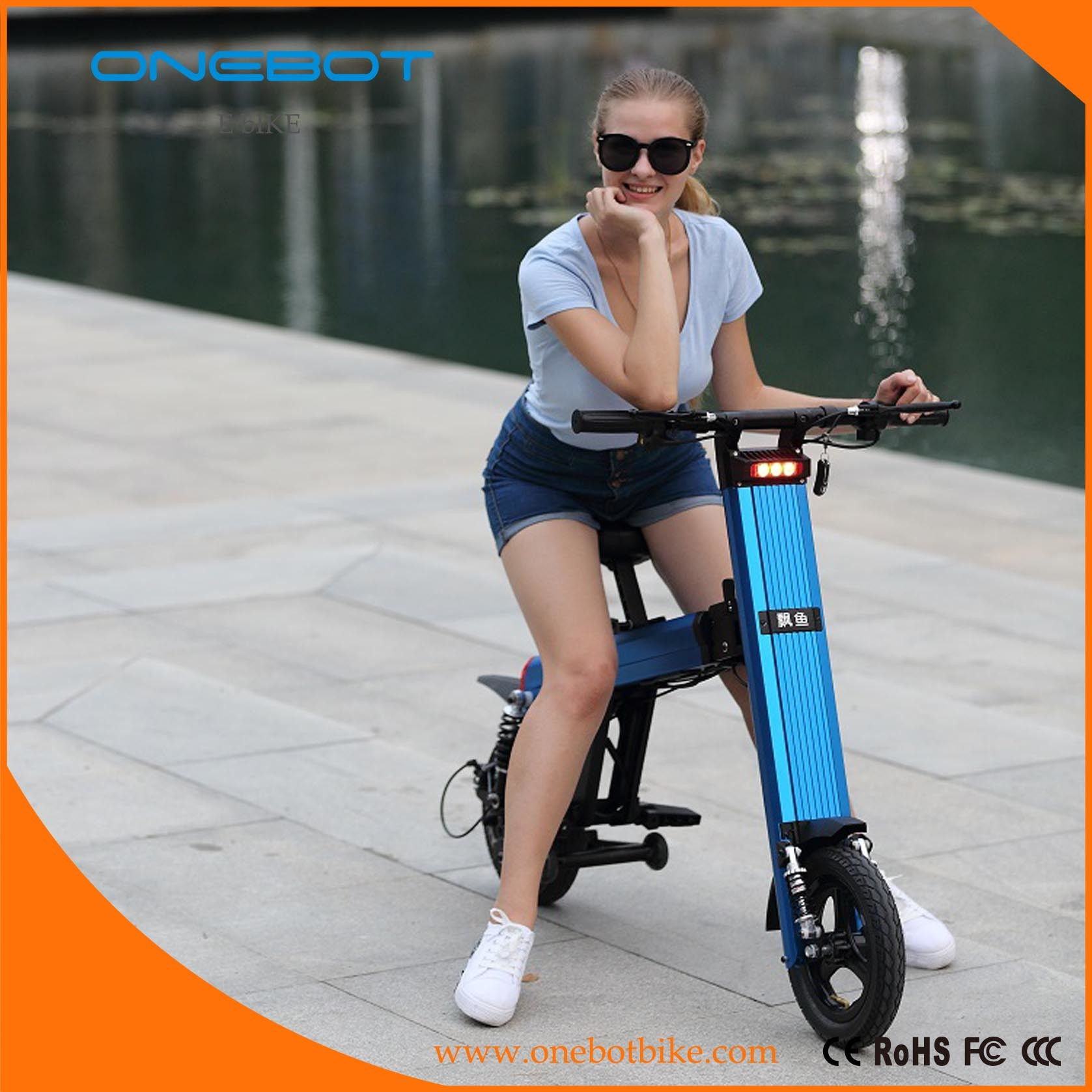 250W 500W Folding Electric Bike Convenient Eco E Motorcycle