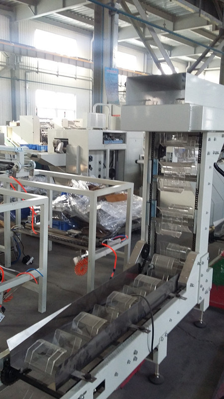 High Quality Pasta Weighing Pillow Packing Machine with 1 Weigher