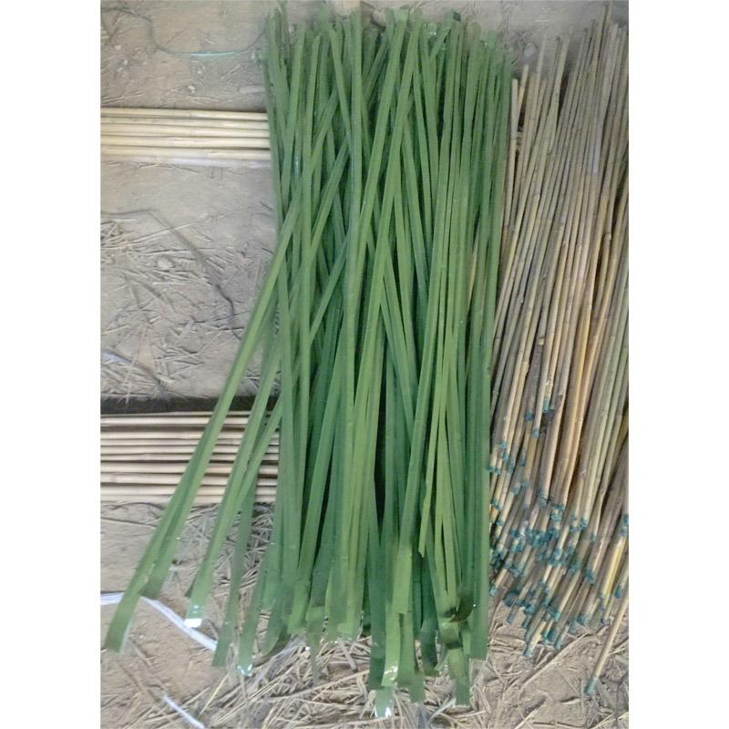 Natural Decorative Bamboo and Color Bamboo
