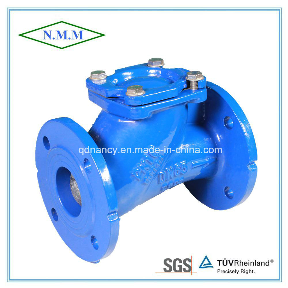 Cast Iron Flanged Ball Check Valve for Fresh Water