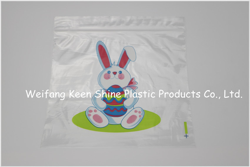 Customized Printed Zipper Bag/ Ziplock Bag