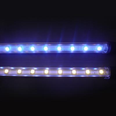 Led fluorescent
