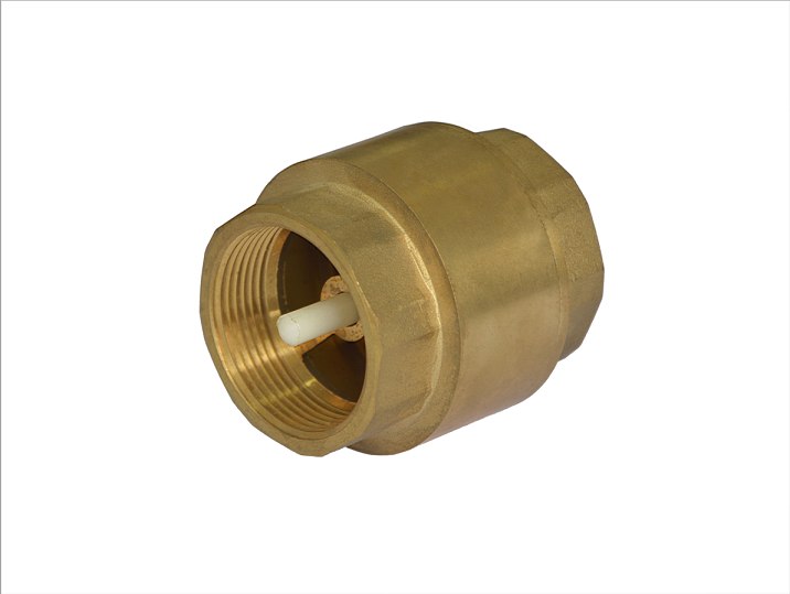 Brass Vertical Check Valve with Brass or Plastic Core