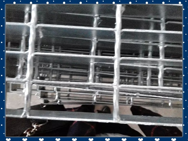 High Quality Galvanized Steel Grating with Lowest Price