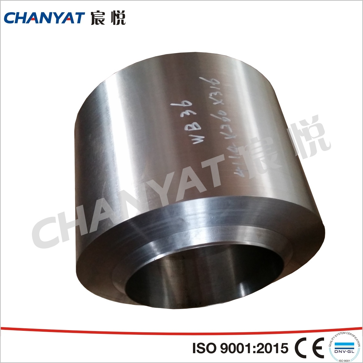 BS3799 Stainless Steel Screwed Bosses A182 Fitting (F304N, F316L, F317L)