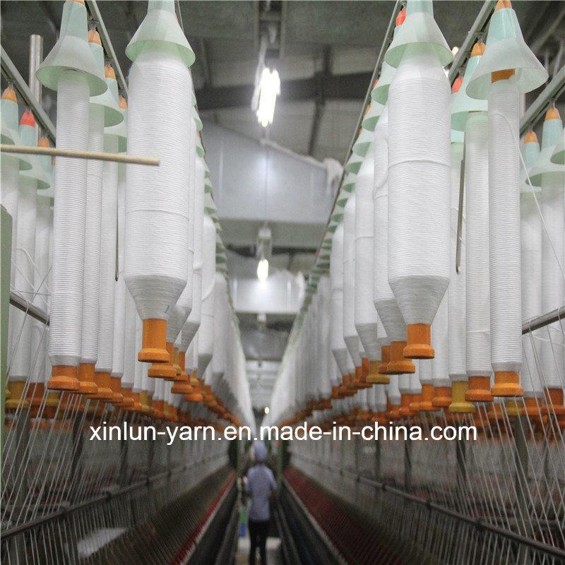 Ne 30/1 Virgin Polyester Spun Yarn