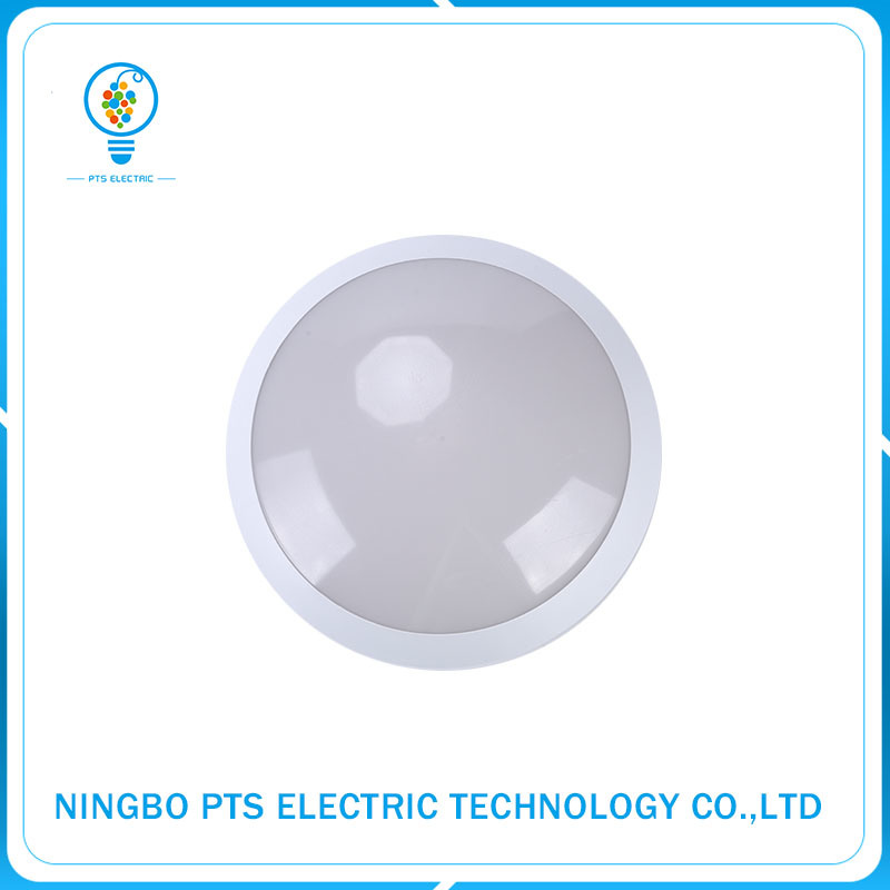 Popular IP65 30W Hotel LED Waterproof Ceiling Night Light with MP3