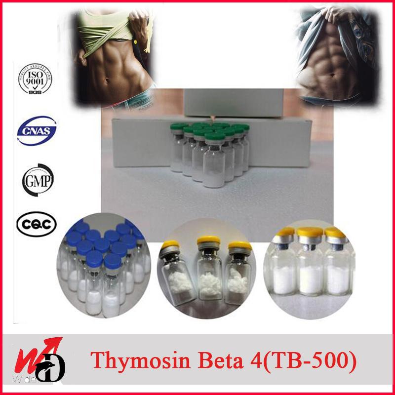 2mg Vial Peptide Tb 500 /Thymosin Beta 4 / Thymosin Beta-4 / Tb4 Peptides
