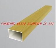 Aluminium Profile/Extruded Aluminum Product for Door