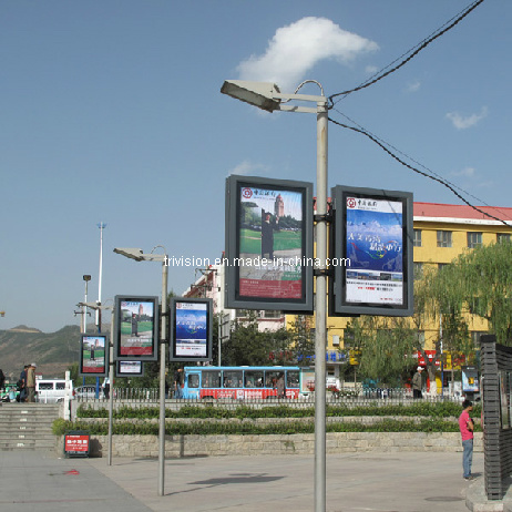 Outdoor Street Stand LED Lamp Light Box Display