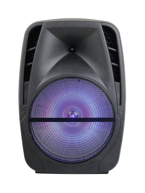15′′ Bluetooth Portable Rechargeable PA Speaker