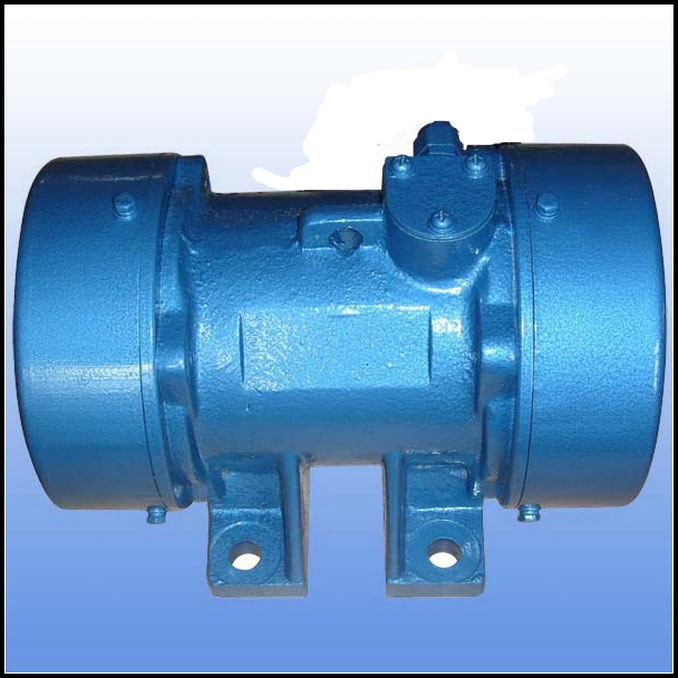 China 2 Pole Electric Vibrator Motor China Electric