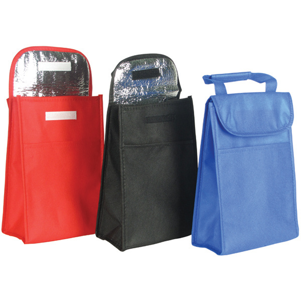 PP Woven Cooler Lunch Tote Bag with Zipper (CN-JSNWC-113)