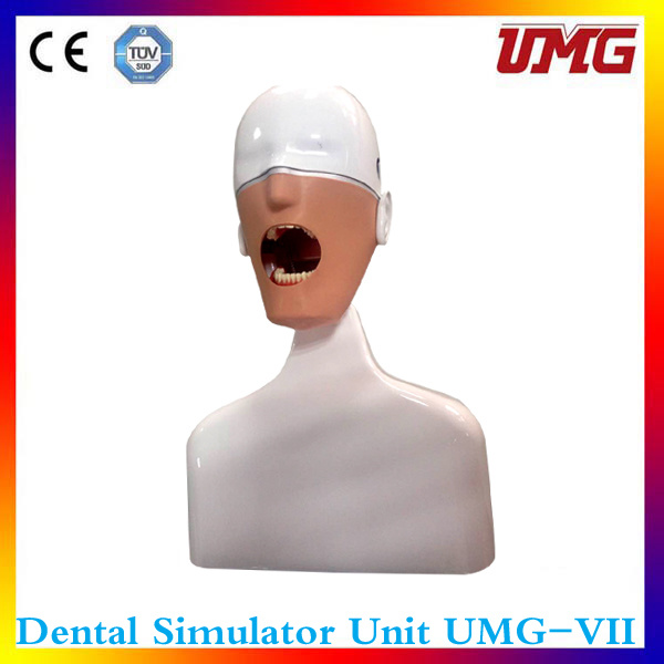 """""""Medical Simulation Used for Dental Teaching Instrument"""""""