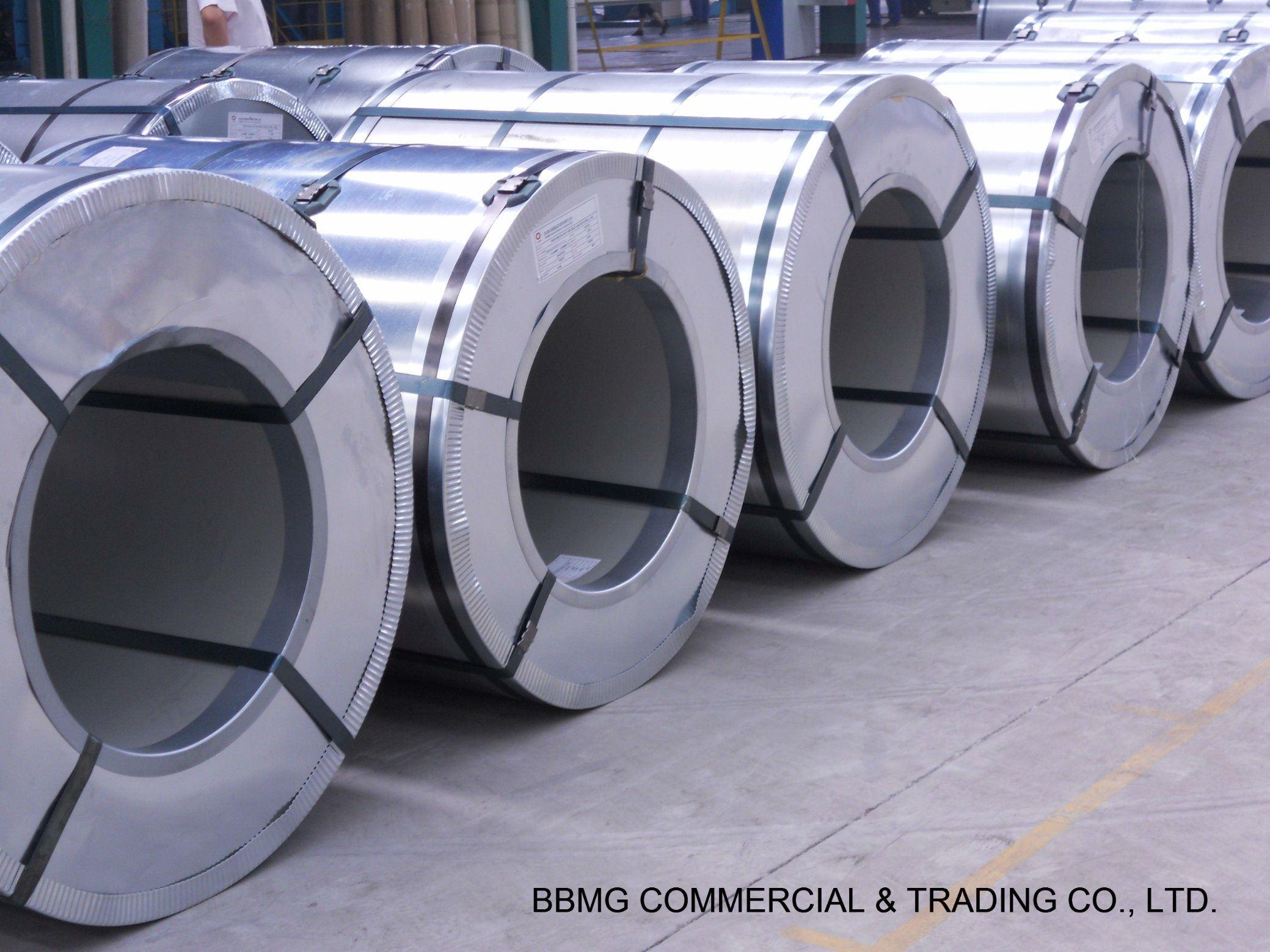 Hot/Cold Rolled Steel Galvanized Coil/Plate/Sheet Gi PPGI