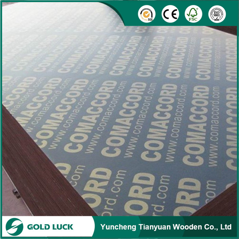 Malaysia Plywood/ Hardwood Plywood/ Film Faced Plywood / Construction Plywood