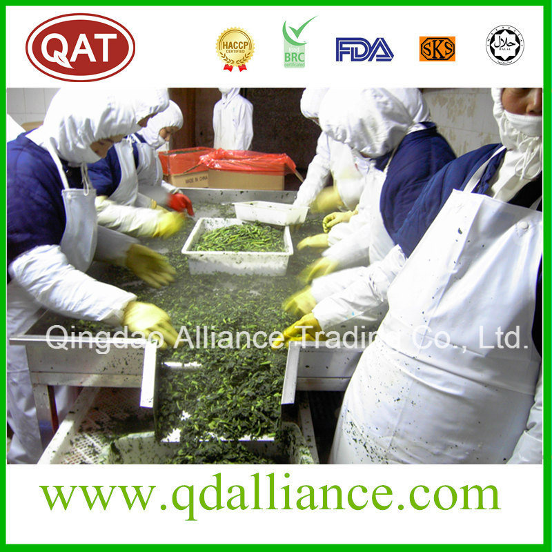 IQF Frozen Chopped Spinach with USDA Quality Standard
