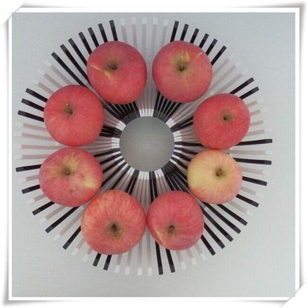 DIY Fruit Dish TV Items (VK14004)