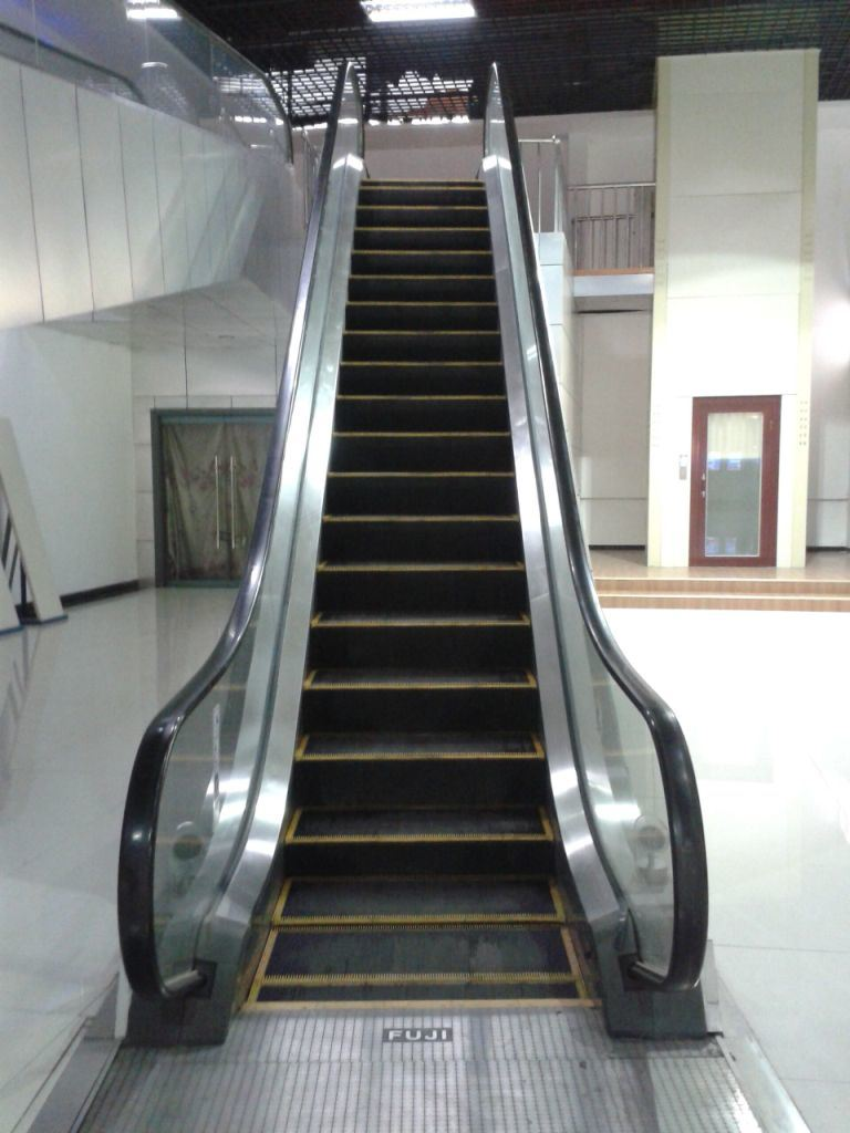 4500m Travelling Height 35 Degree Auto Start Indoor Escalator with Fujizy Brand