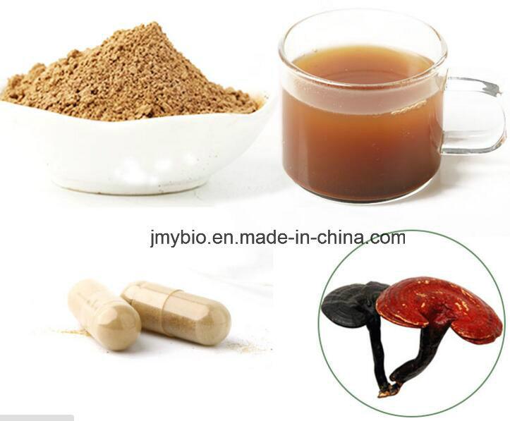 High Quality Lingzhi/ Reishi/ Ganoderma Lucidum Shell-Broken Spore Powder