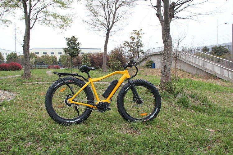26′′ 4.0 Bafun MID Drive Motor High Speed Fat Tire 350W Mountain Electric Bike/Bicycle