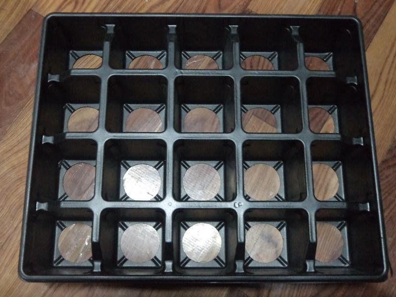 20 Cells Black PS Garden Black Tray