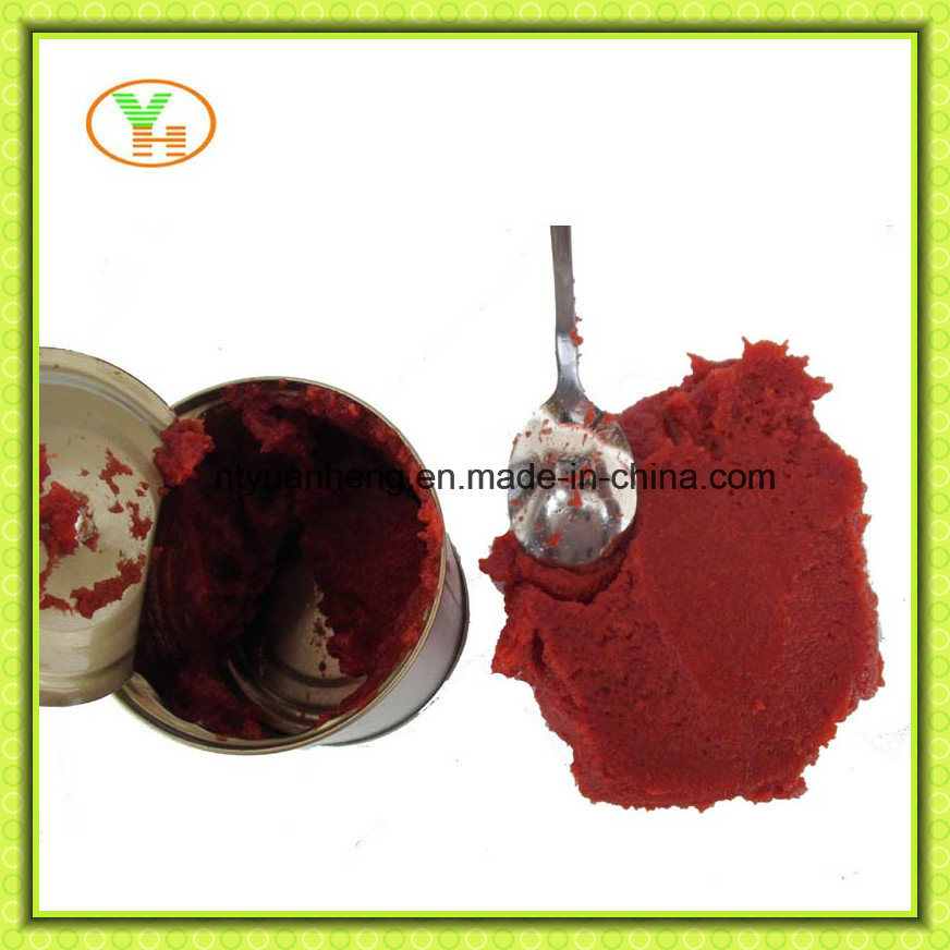 70g-5kg Double Concentrated Tomato Puree