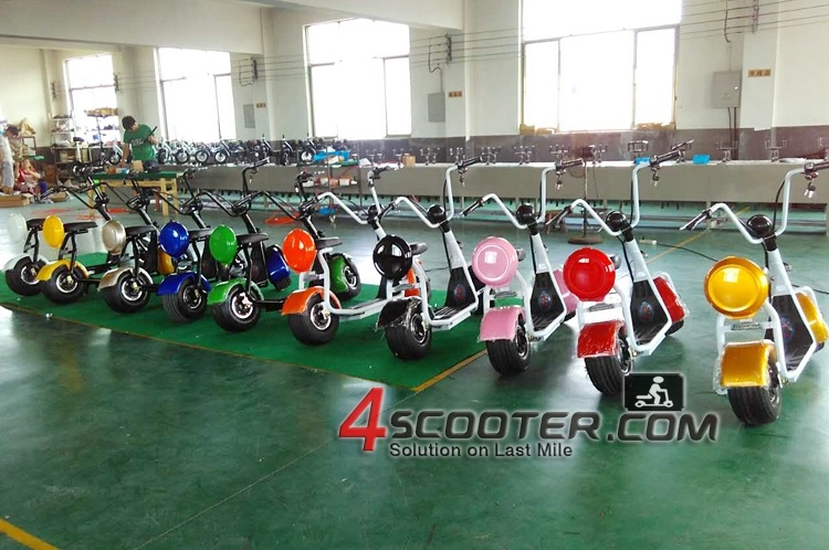 Cabin Charge Buy Electric Order Purchase Harley Citycoco Electric Scooter Es8004 EEC Approved