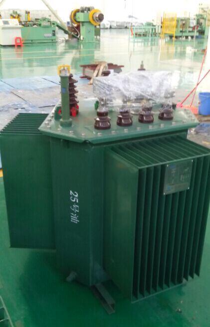 S11 10kv Oil-Immersed Distribution Power Transformer