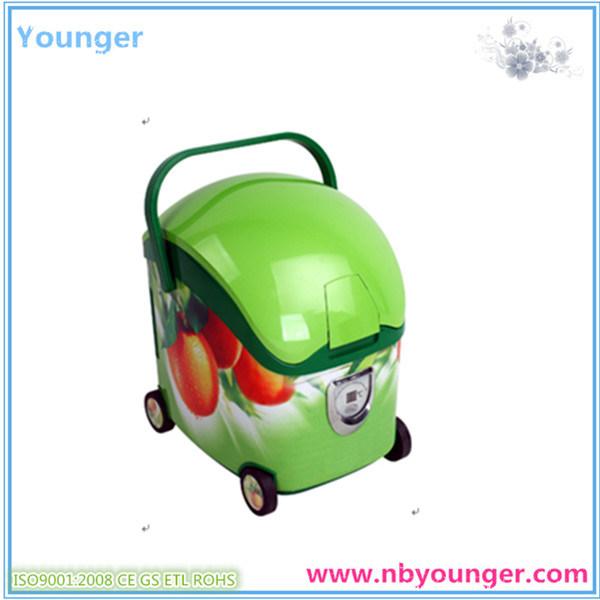 Football Mini Travel Fridge for Car/Cooler Box