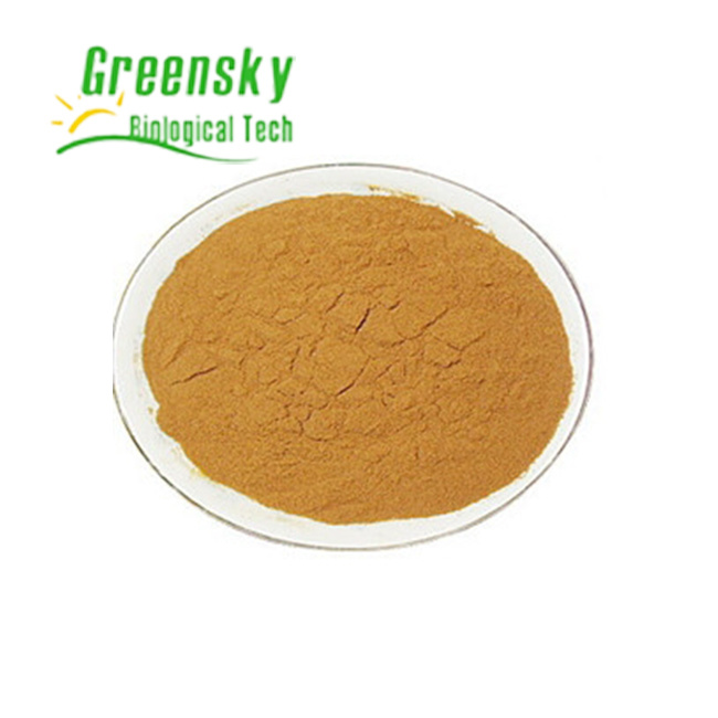 Gymnema Sylvestre with 25% Gymnemic Acids