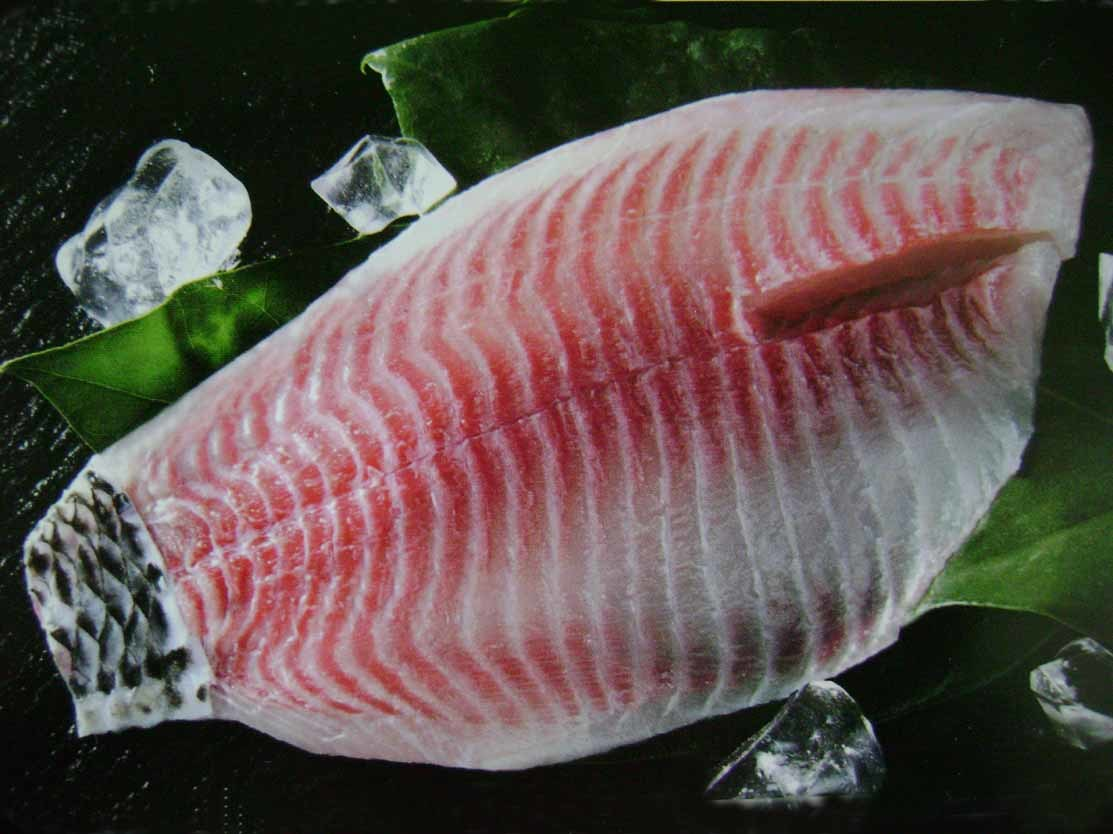 China frozen tilapia fillets with skin on tail china for Tilapia fish sticks