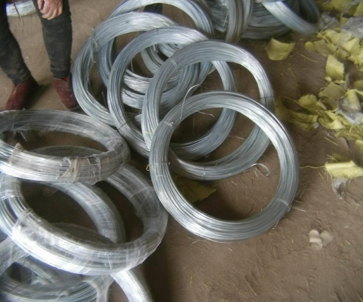 Galvanized Iron Wire /Galvanized Binding Wire/Gi Binding Wire