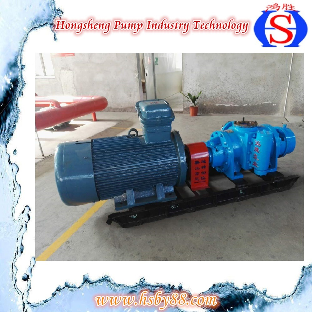 Stainless Steel High Pressure Rotary Gear Lobe Pump