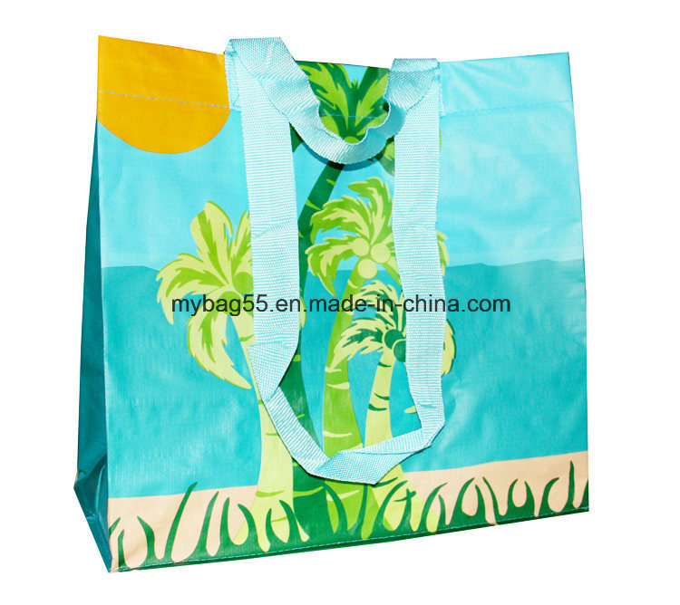 Promotional PP Woven Shopping Bag with Handle (my07251)